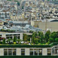 עיצוב גינות גג